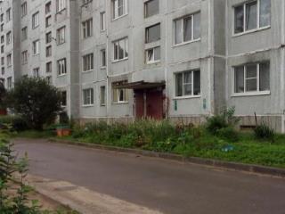 Продажа квартир: 2-комнатная квартира, Ленинградская область, Гатчинский р-н, д. Меньково, 92, фото 1