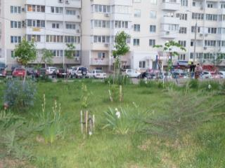 Продажа квартир: 2-комнатная квартира, Краснодар, Восточнo-Кругликовская ул., 48\1, фото 1