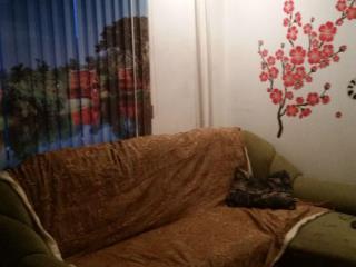 Продажа квартир: 1-комнатная квартира, Красноярск, ул. Микуцкого, 2А, фото 1