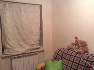 Продажа квартир: 2-комнатная квартира, Санкт-Петербург, Пушкин, ул. Красной Звезды, 19, фото 1